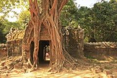 Ο ναός SOM TA, Angkor περιοχή, Siem συγκεντρώνει, Καμπότζη Στοκ Εικόνα