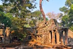 Ο ναός TA Prohm, αρχαίος ναός σε Siem συγκεντρώνει Στοκ Εικόνα