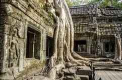 Ο ναός Wat Angkor, Siem συγκεντρώνει, Καμπότζη. Στοκ εικόνες με δικαίωμα ελεύθερης χρήσης