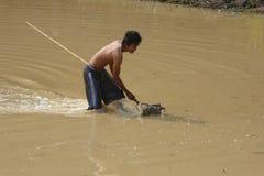 Ο νεαρός άνδρας χρησιμοποιεί μια τσουγκράνα για να πιάσει τα ψάρια Στοκ Εικόνα