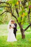 Ο νεόνυμφος αγκαλιάζει τη νύφη σε έναν οπωρώνα μήλων Στοκ εικόνες με δικαίωμα ελεύθερης χρήσης
