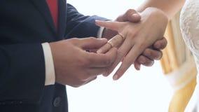 Ο νεόνυμφος βάζει στην κινηματογράφηση σε πρώτο πλάνο γαμήλιων δαχτυλιδιών απόθεμα βίντεο