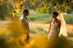 Ο νεόνυμφος και η νύφη θέτουν στο υπόβαθρο το πράσινο δάσος στοκ φωτογραφίες με δικαίωμα ελεύθερης χρήσης