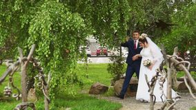 Ο νεόνυμφος οδηγεί τη νύφη κάτω από το δέντρο απόθεμα βίντεο