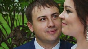 Ο νεόνυμφος που εξετάζει adoringly τη νύφη απόθεμα βίντεο