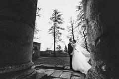 Ο νεόνυμφος φιλά μια νύφη ενώ ο αέρας φυσά το πέπλο της μακριά Στοκ Φωτογραφίες