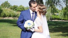 Ο νεόνυμφος φιλά τη νύφη ήπια κάτω από ένα δέντρο απόθεμα βίντεο