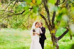 Ο νεόνυμφος φιλά τη νύφη σε έναν οπωρώνα μήλων Στοκ φωτογραφίες με δικαίωμα ελεύθερης χρήσης
