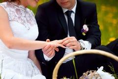 Ο νεόνυμφος φορά τη νύφη δαχτυλιδιών δέσμευση ευτυχής εκλεκτής ποιότητας γάμος ημέρας ζευγών ιματισμού τρισδιάστατος παραγμένος γ Στοκ φωτογραφία με δικαίωμα ελεύθερης χρήσης