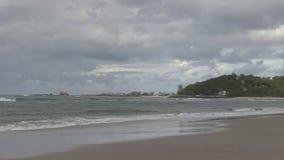 Ο νότιος προϊστάμενος του Palm Beach, Gold Coast QLD, Αυστραλία απόθεμα βίντεο