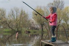 Ο ξανθός τόνος αλιείας κοριτσιών παιδιών λίγος τόνος ευχαριστημένος από το ψάρεμα πιάνει στη γέφυρα βαρκών στοκ εικόνα