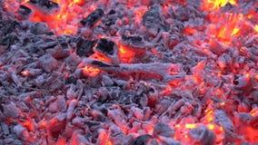 Ο ξυλάνθρακας που καίγεται με το ζωηρόχρωμο πορτοκαλί φως στην εστία φλογών φωτιών καυσόξυλου θαυμάσιος να ικανοποιήσει 4k κοντά  απόθεμα βίντεο