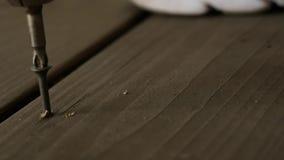 Ο ξυλουργός καθορίζει το ξύλινο πάτωμα με τις βίδες με ένα κατσαβίδι o απόθεμα βίντεο