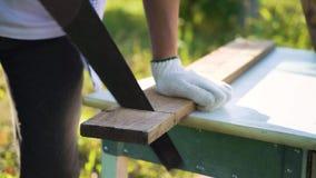 Ο ξυλουργός κινηματογραφήσεων σε πρώτο πλάνο παραδίδει τα προστατευτικά γάντια κόβοντας την ξύλινη σανίδα με το πριόνι χεριών απόθεμα βίντεο