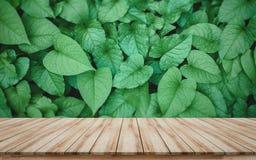 Ο ξύλινος πίνακας για την επίδειξη προϊόντων montage για την πώληση προάγει με το όμορφο πράσινο υπόβαθρο άδειας στοκ φωτογραφία με δικαίωμα ελεύθερης χρήσης
