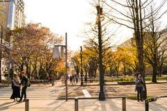 Οδοί Hokaido με τους ανθρώπους Στοκ εικόνα με δικαίωμα ελεύθερης χρήσης