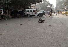 οδοί kolkata επαιτών ικετευμένο στοκ εικόνα