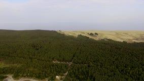 Ο οβελός Curonian, τοπ άποψη φιλμ μικρού μήκους