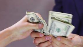 Ο λογιστής μετρά τα χρήματα απόθεμα βίντεο