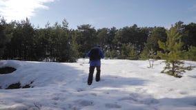 Ο οδοιπόρος ατόμων περιπέτειας στα θερμά ενδύματα και το σακίδιο πλάτης που περπατά στη χιονισμένη διάβαση στο δασικό Α άτομο πεύ απόθεμα βίντεο