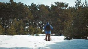 Ο οδοιπόρος ατόμων περιπέτειας στα θερμά ενδύματα και το σακίδιο πλάτης που περπατά στη χιονισμένη διάβαση στο δασικό Α άτομο πεύ φιλμ μικρού μήκους