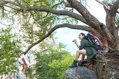 Ο οδοιπόρος γυναικών με το σακίδιο πλάτης στο μεγάλο δέντρο ελέγχει το χάρτη για να βρεί τις κατευθύνσεις και να φανεί διόπτρες σ στοκ φωτογραφία με δικαίωμα ελεύθερης χρήσης