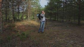 Ο οδοιπόρος στα ξύλα ψάχνει μια έξοδο απόθεμα βίντεο