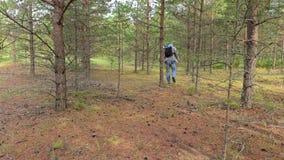 Ο οδοιπόρος τρέχει τα ξύλα φιλμ μικρού μήκους
