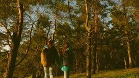 Ο οδοιπόρος Girs σε ένα δάσος πεύκων ο τουρίστας απολαμβάνει τη ζωή και τη φύση ταξίδι περιπέτειας διακοπών Ευτυχή οικογενειακά τ απόθεμα βίντεο