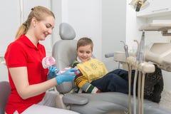Ο οδοντίατρος που παρουσιάζει το μικρό παιδί πώς να καθαρίσει τα δόντια με μια οδοντόβουρτσα σε ένα τεχνητό ομοίωμα σαγονιών στοκ εικόνες με δικαίωμα ελεύθερης χρήσης