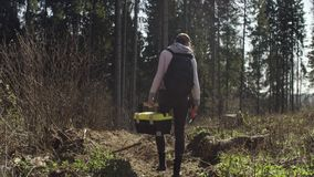 Ο οικολόγος εξετάζει ένα κολόβωμα δέντρων φιλμ μικρού μήκους