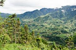 Οδοιπορία τροπικών δασών στο βόρειο Βιετνάμ Στοκ φωτογραφία με δικαίωμα ελεύθερης χρήσης