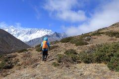 Οδοιπορία Backpacker στα βουνά του Ιμαλαίαυ στοκ εικόνα με δικαίωμα ελεύθερης χρήσης
