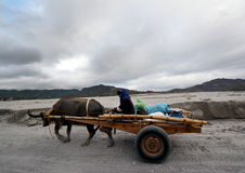 Οδοιπορικό Pinatubo Στοκ εικόνα με δικαίωμα ελεύθερης χρήσης