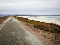 Οδοιπόροι κατά μήκος της ακτής ανατολικών κόλπων Στοκ Φωτογραφίες