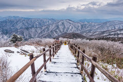 Οδοιπόροι στα χειμερινά βουνά, άσπρο χιόνι χειμερινών τοπίων Mounta στοκ φωτογραφία