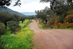 Οδοιπόροι στην οροσειρά φυσικό πάρκο de Aracena, Huelva, Ισπανία Στοκ Φωτογραφία