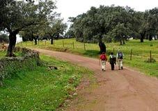 Οδοιπόροι στην οροσειρά φυσικό πάρκο de Aracena, Huelva, Ισπανία Στοκ φωτογραφίες με δικαίωμα ελεύθερης χρήσης