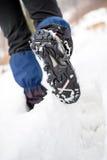 Οδοιπόρος που περπατά στο χιόνι στο χειμερινό δάσος Στοκ εικόνα με δικαίωμα ελεύθερης χρήσης