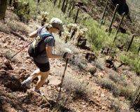 Οδοιπόρος στο εθνικό πάρκο Saguaro Στοκ Εικόνα