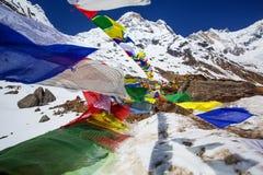 Οδοιπόρος στο οδοιπορικό στα Ιμαλάια, κοιλάδα Annapurna Στοκ φωτογραφίες με δικαίωμα ελεύθερης χρήσης