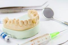 Οδοντίατρος και επεξεργασία στοκ φωτογραφίες με δικαίωμα ελεύθερης χρήσης