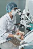 Οδοντίατρος που κοιτάζει μέσω ενός μικροσκοπίου Στοκ Εικόνα