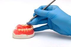 οδοντικά όργανα Οδοντοστοιχίες και ιατρικά εργαλεία και μια πρόσθεση Στοκ φωτογραφία με δικαίωμα ελεύθερης χρήσης