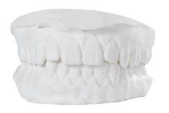 Οδοντικό πρότυπο στοκ φωτογραφία με δικαίωμα ελεύθερης χρήσης