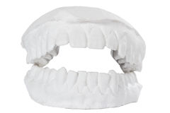 Οδοντικό πρότυπο στοκ εικόνες