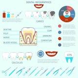 Οδοντικό σύνολο infographics Στοκ Εικόνες