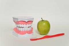Οδοντόβουρτσα και πράσινο μήλο, οδοντική έννοια προσοχής Στοκ εικόνα με δικαίωμα ελεύθερης χρήσης