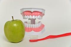 Οδοντόβουρτσα και πράσινο μήλο, οδοντική έννοια προσοχής Στοκ Εικόνες