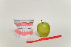 Οδοντόβουρτσα και πράσινο μήλο, οδοντική έννοια προσοχής Στοκ Εικόνα